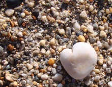 A little heart in the sand